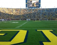 Michigan Stadium field (Chris Zadorozny / MJ)