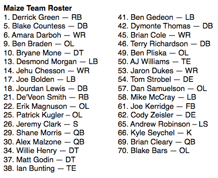The Michigan Journal's Maize team roster, selected by Staff Reporter Jeramy Stover.