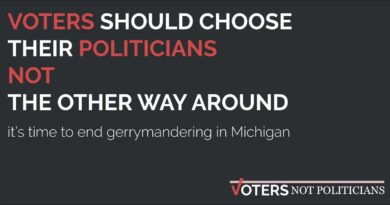 The Dilution of Democracy: Gerrymandering's Effects on Michigan