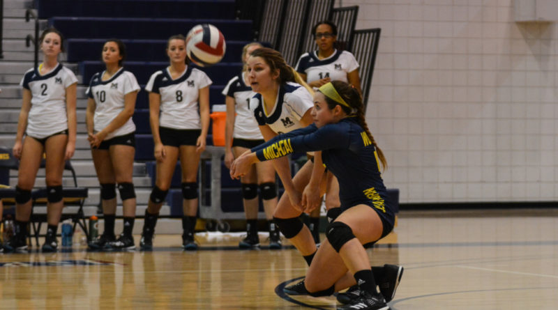 Wolverines devastate the Tigers with kills