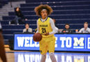Wolverines defeated in WHAC opener